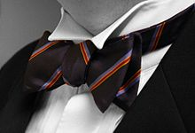 220px-Bow-tie-colour-isolated